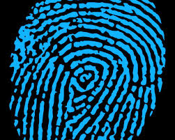 Cryptographic Hashes are like Digital Finger Prints