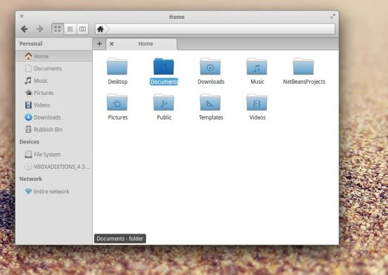 Elementary OS - File Browser