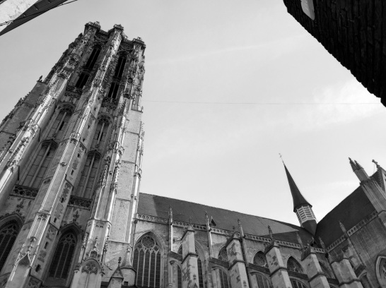 St Rombouts Cathedral Mechelen